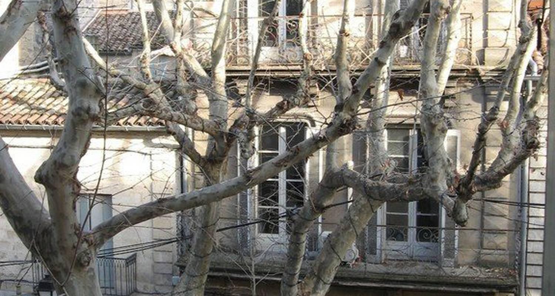 Furnished accommodation: meublé de tourisme uzès in uzès (117661)