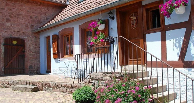 Gîte: gîte la maison bleue à saint-nabor (118583)