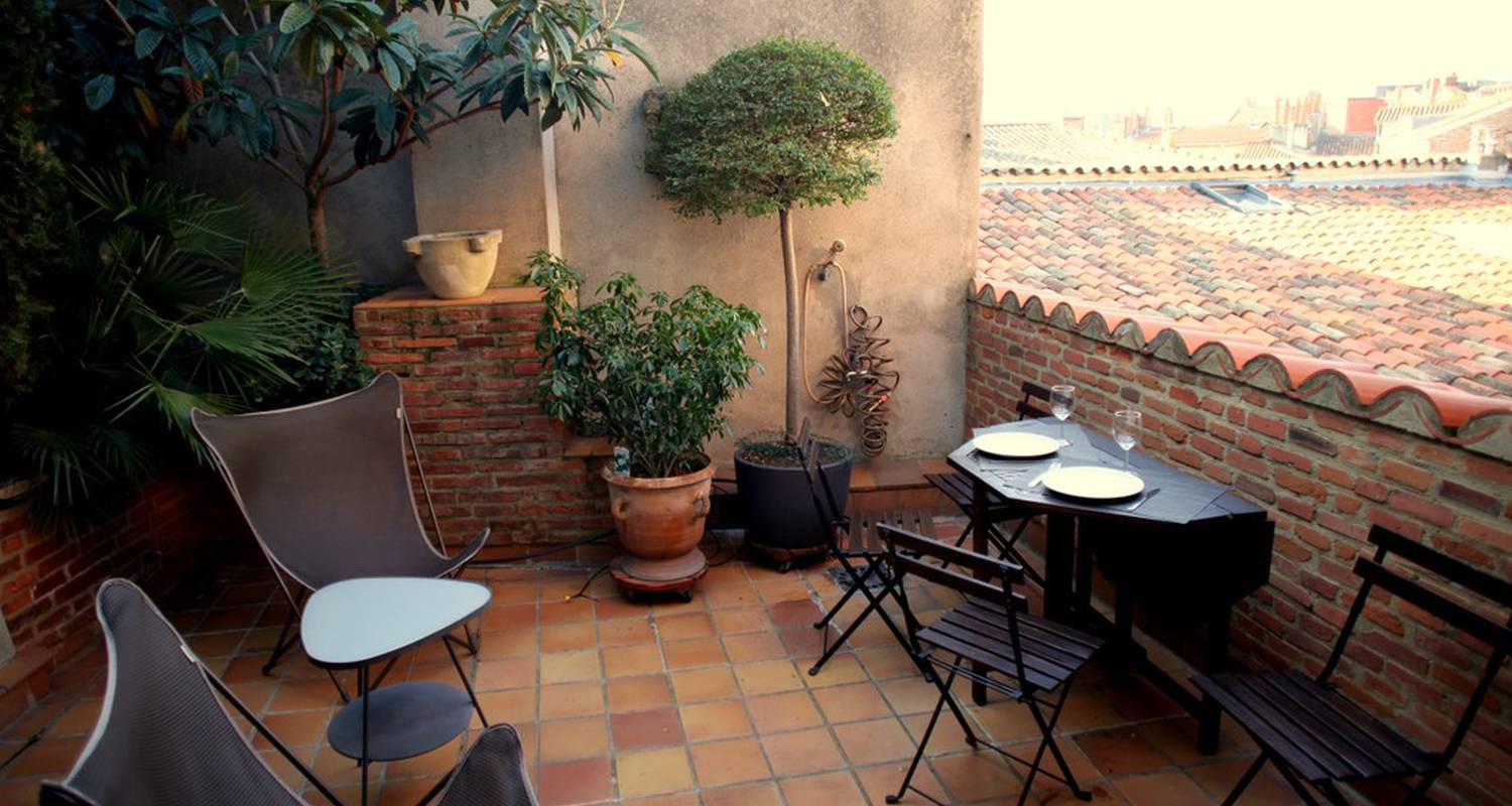 Furnished accommodation: studio avec terrasse  in toulouse (119138)