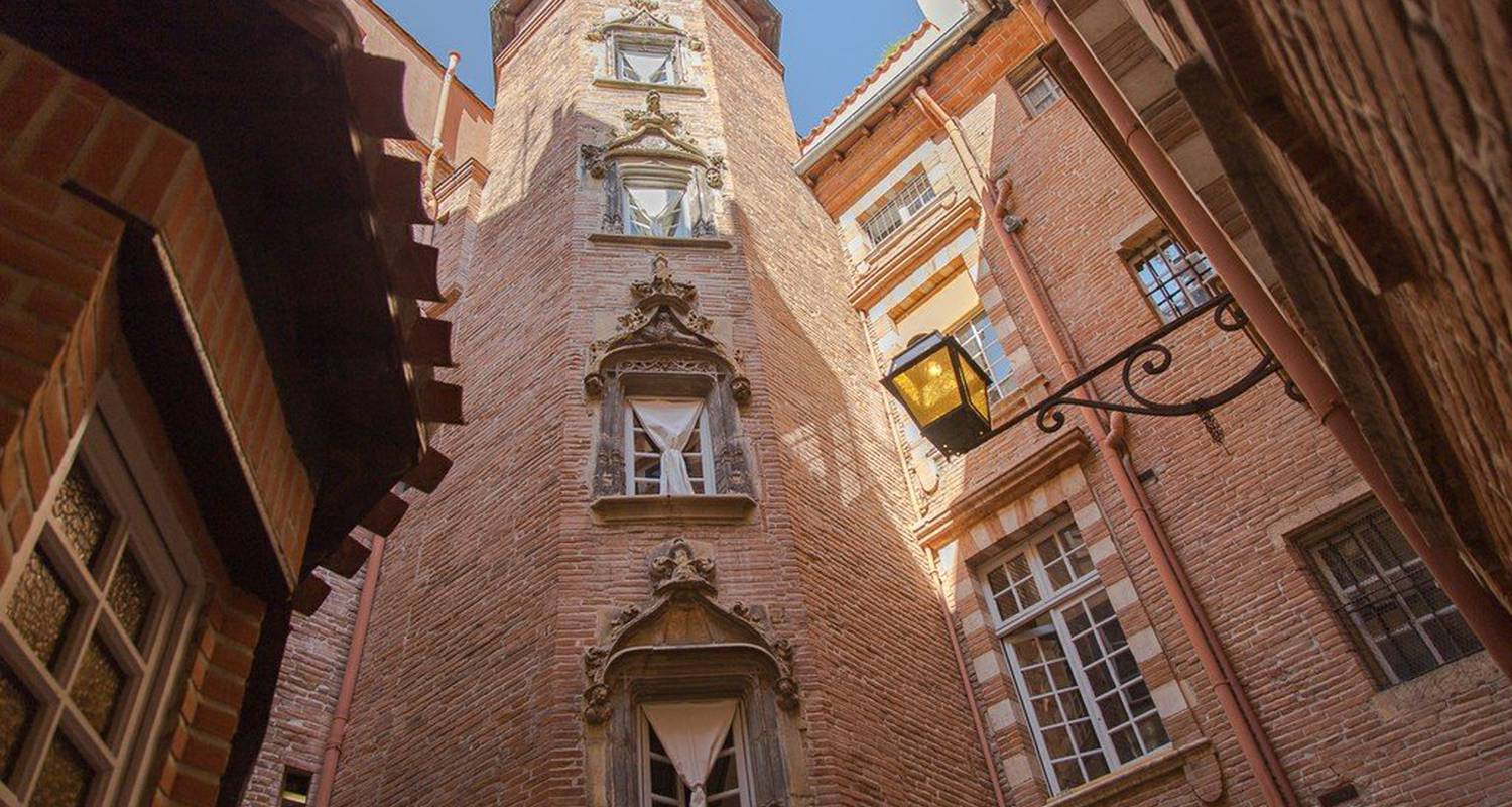 Furnished accommodation: studio avec terrasse  in toulouse (119139)