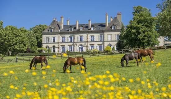 Château d'Ygrande picture