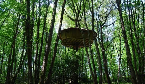 Cabane à échelle de la Hulotte picture
