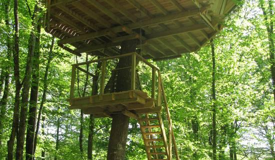 Cabane à escalier de la Belle picture