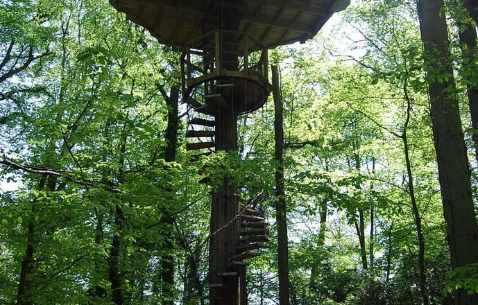 Cabane à escalier de la Canopée