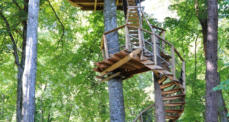 Cabane escalier des l muriens magn 28881 - Fixation cabane dans les arbres ...