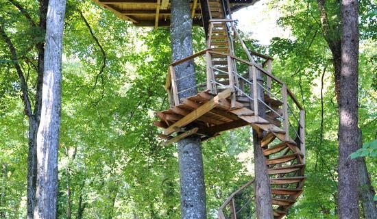 Cabane à escalier des Lémuriens picture