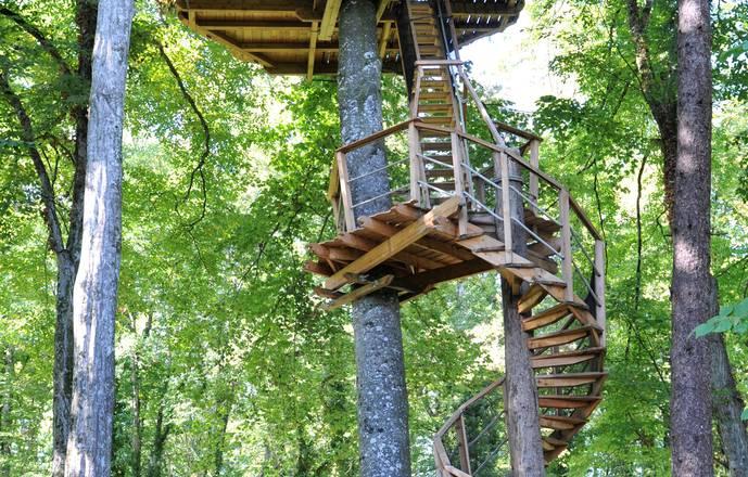 Cabane à escalier des Lémuriens