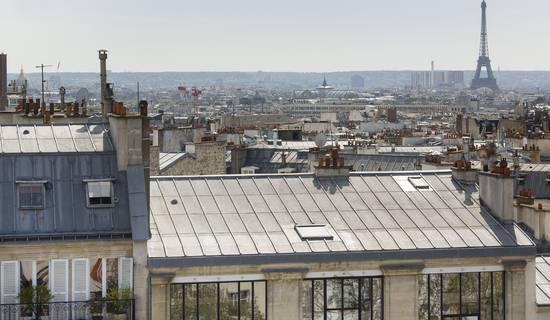 View of the roofs of Paris