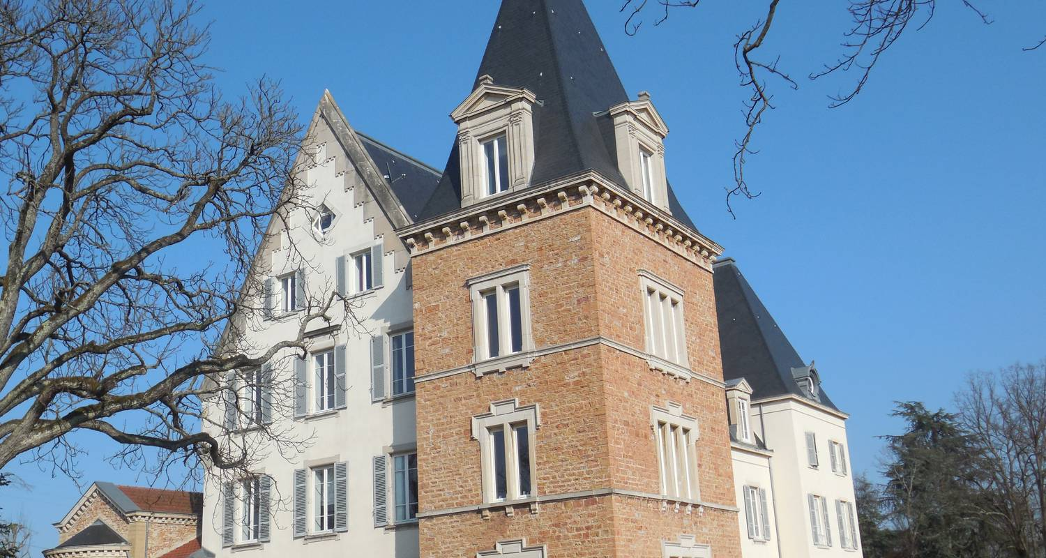 Furnished accommodation: charming apartment in the castle of bussy in saint-julien (122371)