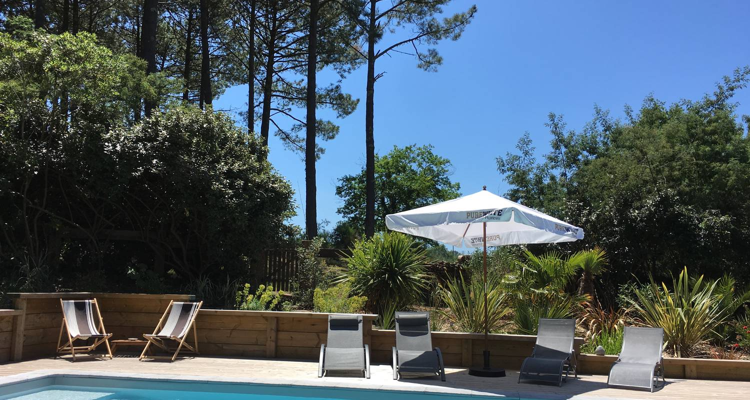 Furnished accommodation: charming house with pool under the pines in biscarrosse-plage (123208)