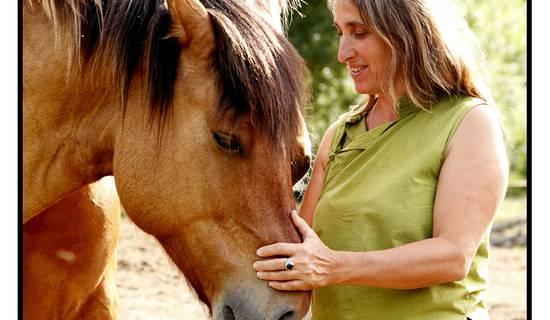 promenade à cheval picture
