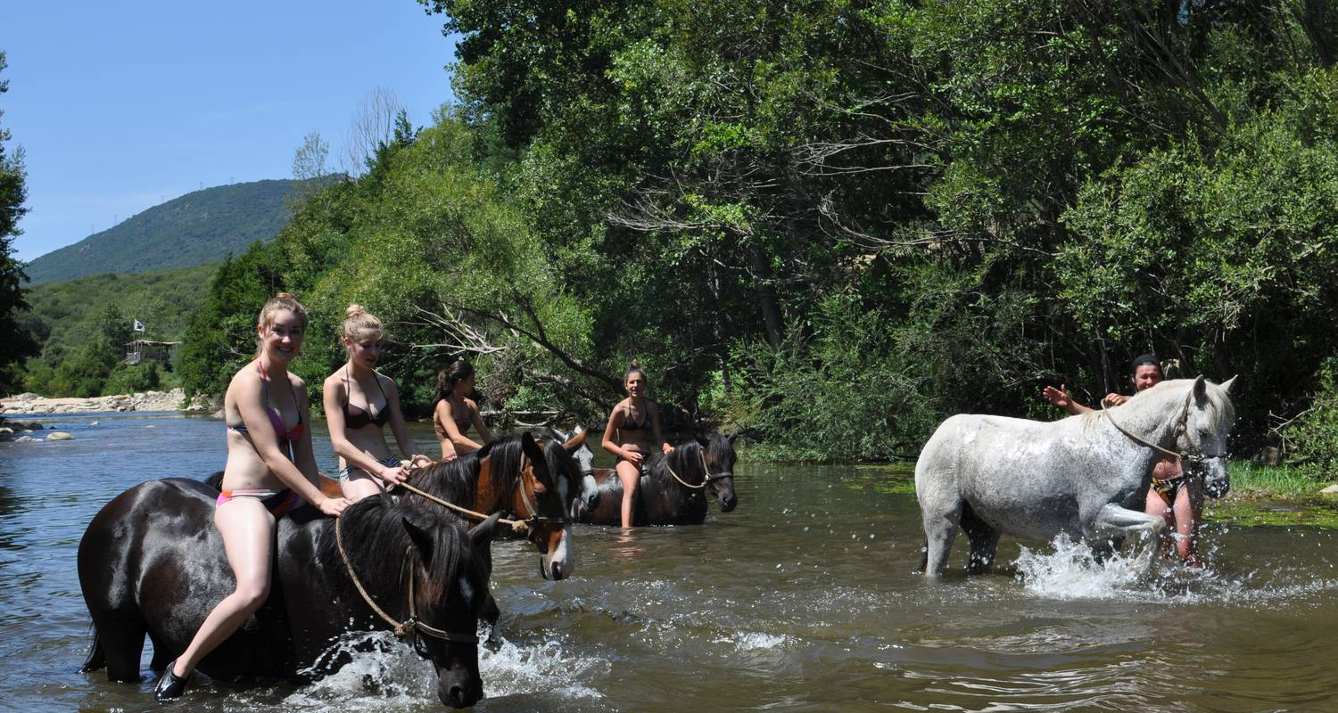 Activité: horse and pony ride , horse ride and swim in the river with your horse en sartène (123593)