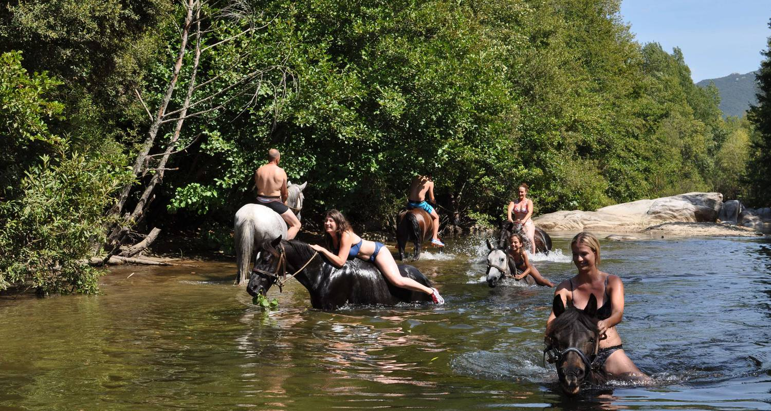 Activité: horse and pony ride , horse ride and swim in the river with your horse en sartène (123592)
