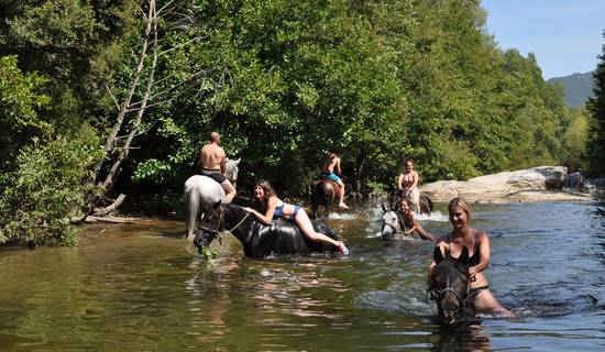 Horse and pony ride , horse ride and swim in the river with your horse