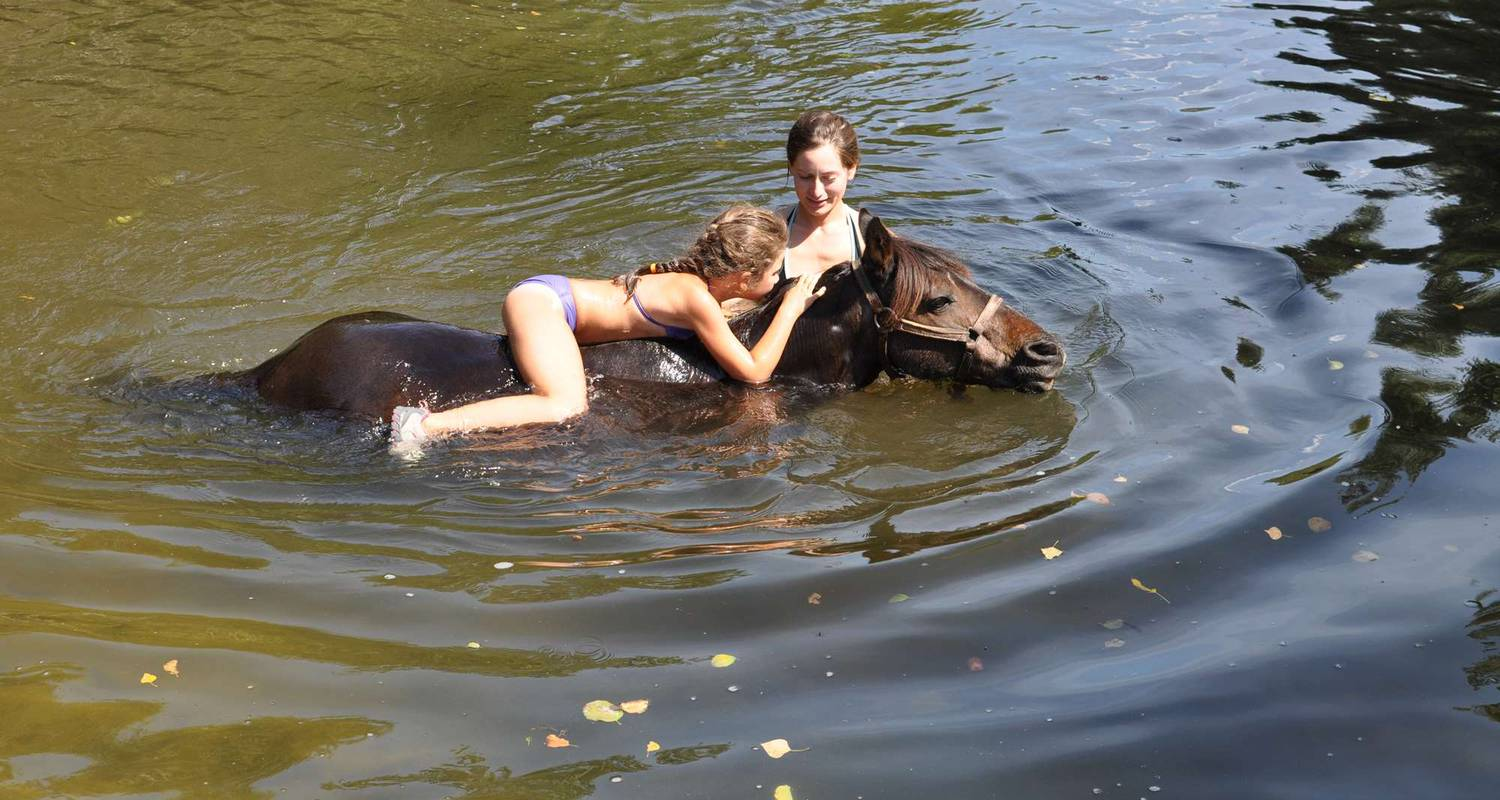 Activité: horse and pony ride , horse ride and swim in the river with your horse en sartène (123594)