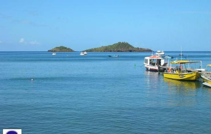 Plongée dans la Réserve Cousteau en Guadeloupe