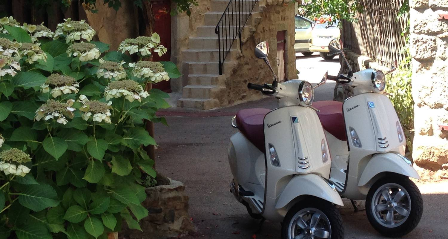 Activity: location de vespa primavera 50 cc in vinezac (123669)