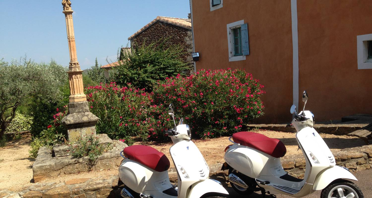Activity: location de vespa primavera 50 cc in vinezac (123671)