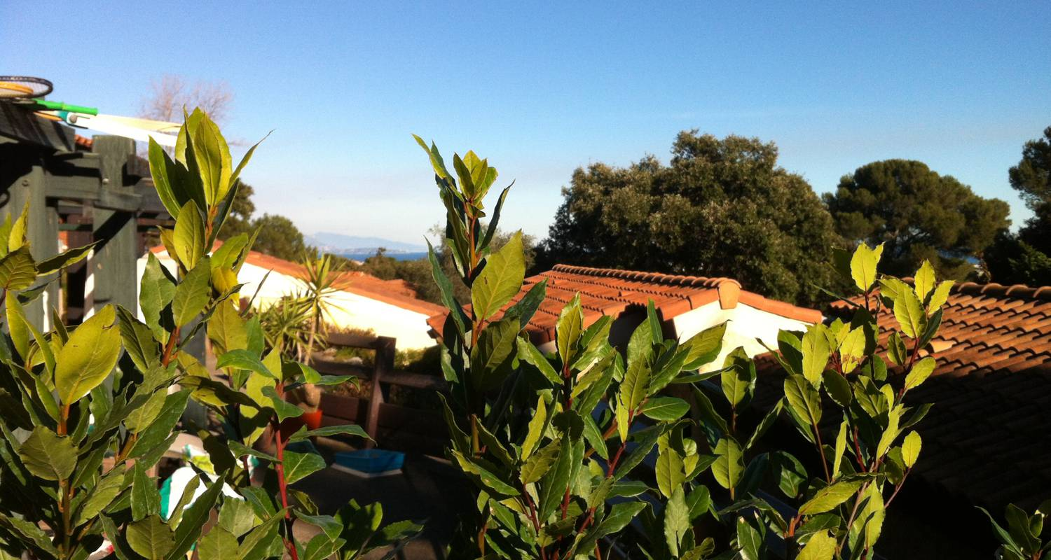 Furnished accommodation: little house in a park with pool in golfe-juan (123817)