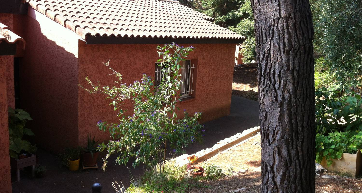 Furnished accommodation: little house in a park with pool in golfe-juan (123816)