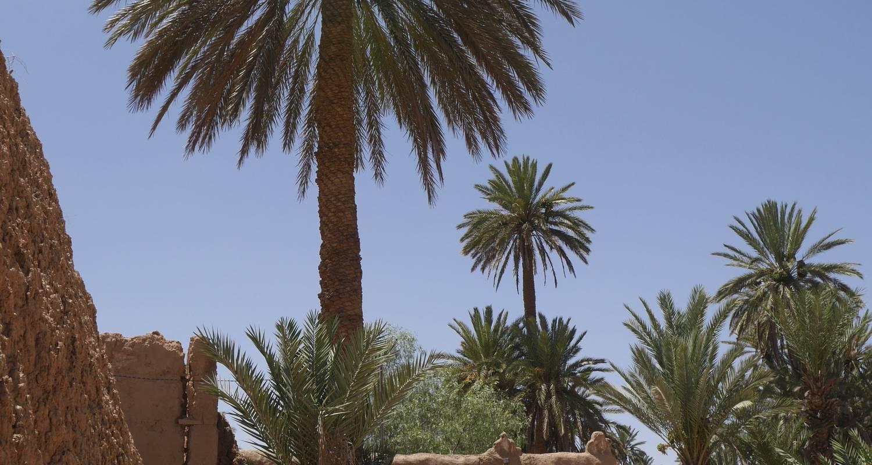 Gîte: la maison saharaouie in asrir (124001)