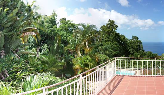 DOMAINE DU PITON BELLEVUE - Pitaya studio with sea view, swimming pool and spa access picture