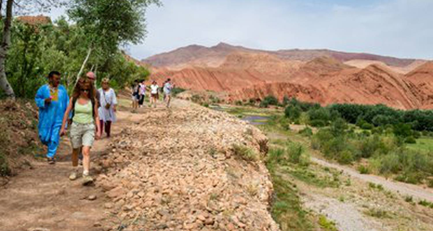 Activity: activities dar daif: courses kitchen, hammam, walks, donkeys, mountain biking, 4x4, canoe, bivouac, trek, desert, atlas, ornithological, pmr, library in ouarzazat (124096)