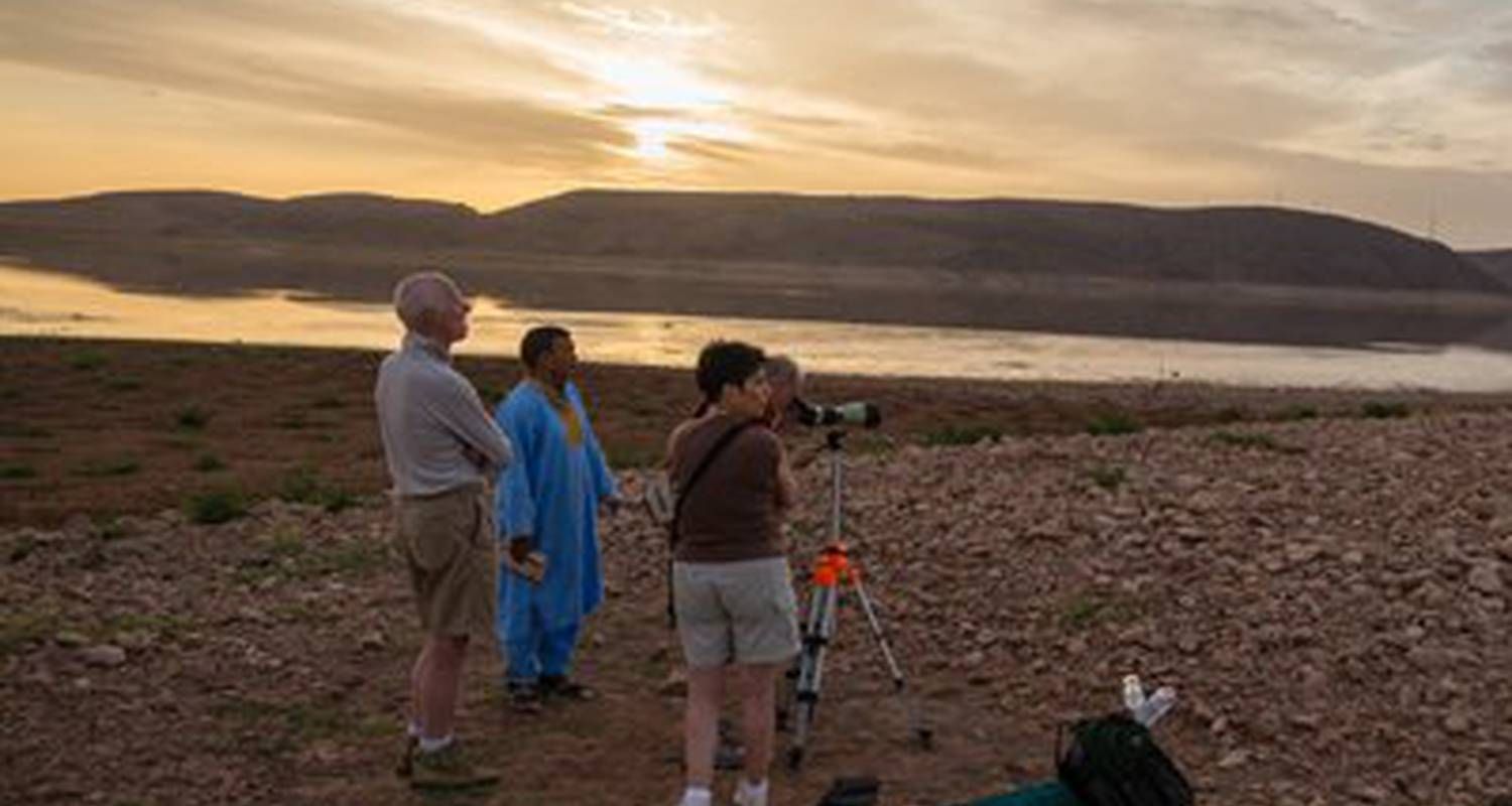 Activity: activities dar daif: courses kitchen, hammam, walks, donkeys, mountain biking, 4x4, canoe, bivouac, trek, desert, atlas, ornithological, pmr, library in ouarzazat (124097)