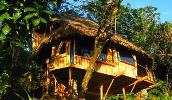 VANIRA LODGE picture