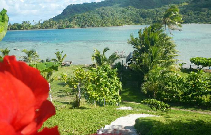 Huahine Location - Le Studio