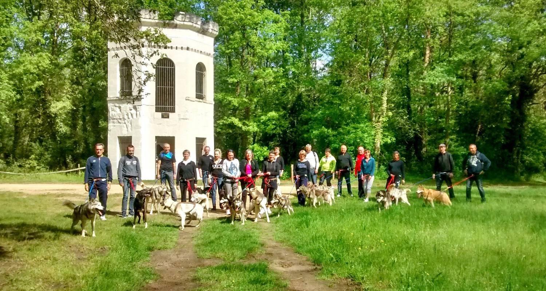 Activité: balade récréative en cani rando avec un husky de sibérie à jaulnay (125369)