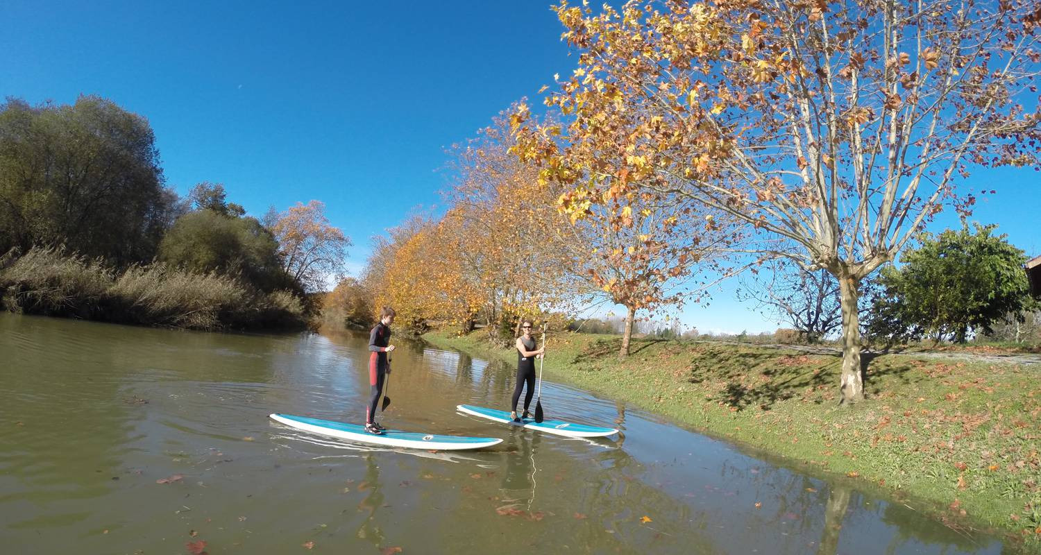 Activity: balade riviere en stand up paddle in bayonne (125421)