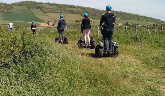 Segway Tour in the Beaujolais vineyards