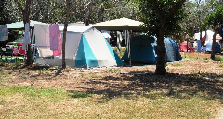 Espacios del campamento: camping malvarrosa de corinto en sagunto (125484)