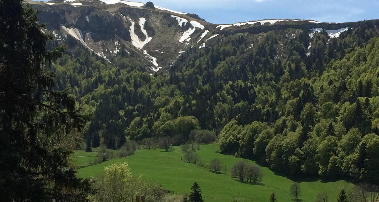 Logement meublé: charmant chalet de montagne à mont-dore (125999)