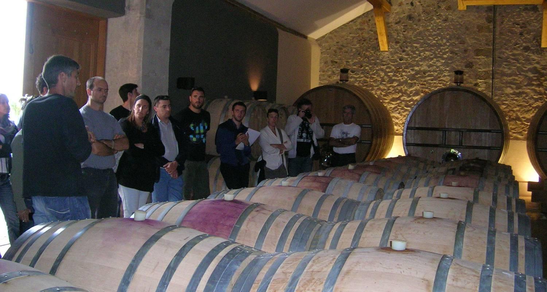 Activité: découvrir les arômes du vin à clermont-l'hérault (125549)