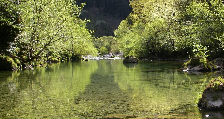 Activité: pêche à la mouche à barjac (125691)