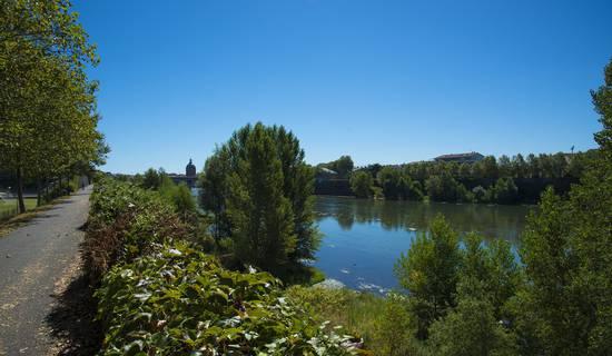 Calme et nature au centre de Toulouse picture
