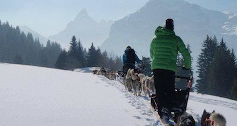 Activité: chiens de traineaux en mont-saxonnex (125853)