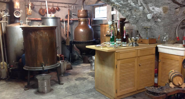Activité: distillateur, liquoriste. à corps (125913)