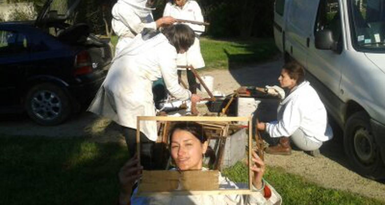 Activité: apiculture à fontvieille (125986)