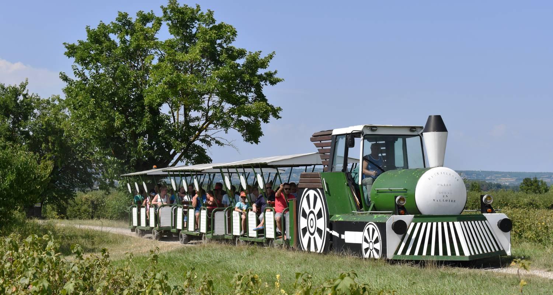 Activité: découverte du savoir-faire de la distillerie ogier  à moras-en-valloire (126083)