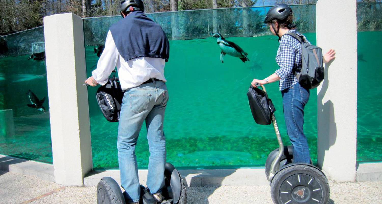 Activity: visite du zoo de beauval en segway in saint-aignan (126231)
