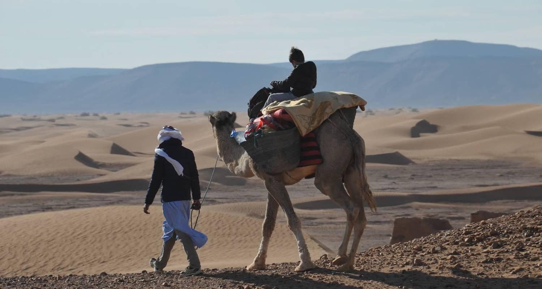 Activity: trek dans le désert  in mhamid (126321)