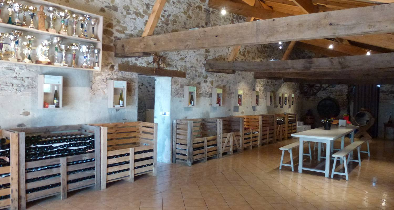 Activity: dégustation-vente de vins de producteur in saint-philbert-de-bouaine (126381)