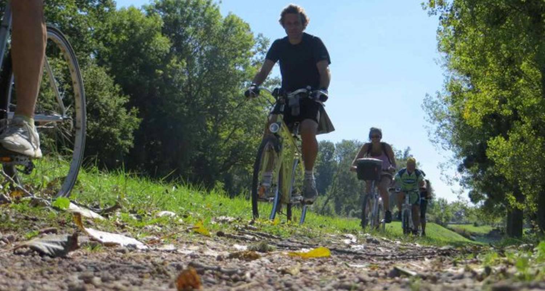Activité: circuit vélo et dégustation dans les vignes de chablis à auxerre (126431)