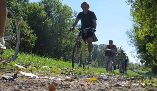 Circuit vélo et dégustation dans les vignes de Chablis