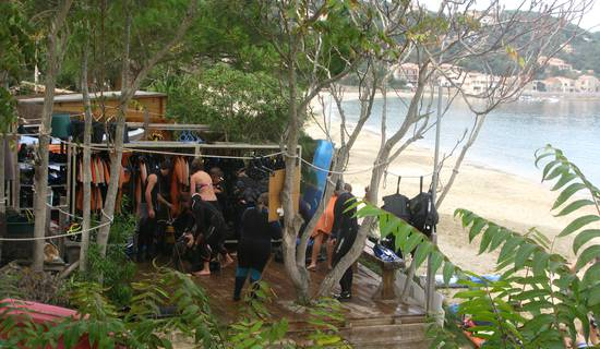 Torra plongée : plongée sous marine