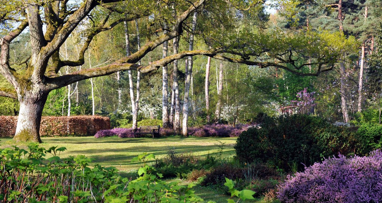 Activité: arboretum des grandes bruyères à ingrannes (126509)