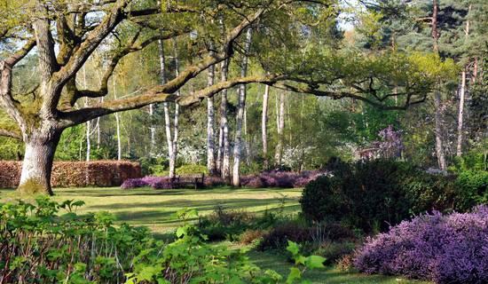 Arboretum des Grandes Bruyères photo
